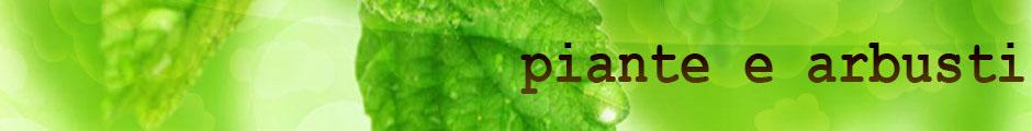 piante-e-arbusti.it